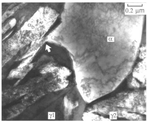 Austenite decomposition to Ferrite